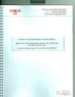 Báo cáo tài chính hợp nhất quý 2 năm 2014 (đã soát xét) - Công ty Cổ phần Điện Cơ Hải Phòng