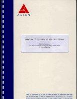 Báo cáo tài chính năm 2008 (đã kiểm toán) - Công ty Cổ phần Bia Hà Nội - Hải Dương