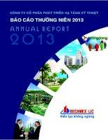 Báo cáo thường niên năm 2013 - Công ty Cổ phần Phát triển Hạ tầng Kỹ thuật