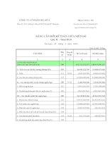 Báo cáo tài chính quý 2 năm 2010 - Công ty Cổ phần DIC số 4
