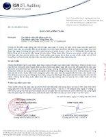 Báo cáo tài chính năm 2012 (đã kiểm toán) - Công ty Cổ phần Dược - Vật tư Y tế Đăk Lăk