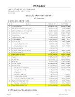 Báo cáo tài chính quý 3 năm 2008 - Công ty Cổ phần Xây dựng Công nghiệp DESCON