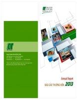 Báo cáo thường niên năm 2013 - Công ty Cổ phần Chế biến Gỗ Đức Thành