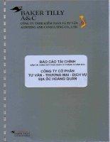 Báo cáo tài chính năm 2012 (đã kiểm toán) - Công ty cổ phần Tư vấn-Thương mại-Dịch vụ Địa ốc Hoàng Quân