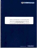 Báo cáo tài chính hợp nhất quý 2 năm 2013 (đã soát xét) - Công ty Cổ phần Đầu tư và Xây dựng HUD1