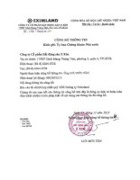 Báo cáo tài chính hợp nhất quý 3 năm 2013 - Công ty cổ phần Bất động sản E Xim