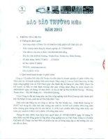 Báo cáo thường niên năm 2013 - Công ty Cổ phần Chế biến Gỗ Thuận An