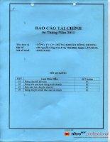 Báo cáo tài chính quý 2 năm 2011 (đã soát xét) - Công ty Cổ phần Chứng khoán Đông Dương