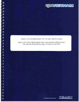 Báo cáo tài chính hợp nhất năm 2013 (đã kiểm toán) - Công ty Cổ phần Đầu tư và Xây dựng HUD1