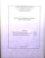 Báo cáo tài chính quý 4 năm 2013 - Công ty Cổ phần Hồng Hà Long An