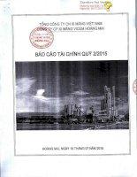 Báo cáo tài chính quý 2 năm 2015 - Công ty cổ phần Xi măng VICEM Hoàng Mai