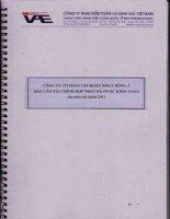 Báo cáo tài chính hợp nhất năm 2011 (đã kiểm toán) - Công ty Cổ phần Tập đoàn Nhựa Đông Á