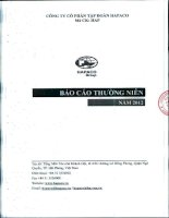 Báo cáo thường niên năm 2012 - Công ty Cổ phần Tập đoàn Hapaco