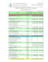 Báo cáo tài chính quý 1 năm 2010 - Công ty Cổ phần Chế biến Gỗ Thuận An