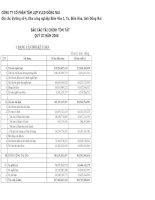 Báo cáo tài chính quý 3 năm 2008 - Công ty Cổ phần Tấm lợp Vật liệu xây dựng Đồng Nai