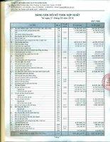 Báo cáo tài chính hợp nhất quý 1 năm 2014 - Công ty Cổ phần Dịch vụ Ô tô Hàng Xanh