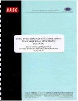 Báo cáo tài chính hợp nhất quý 2 năm 2011 (đã soát xét) - Công ty Cổ phần Sản xuất Kinh doanh Xuất nhập khẩu Bình Thạnh
