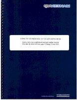 Báo cáo tài chính công ty mẹ năm 2012 (đã kiểm toán) - Công ty Cổ phần Đầu tư và Xây dựng HUD1