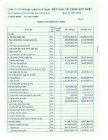 Báo cáo tài chính hợp nhất quý 4 năm 2011 - Công ty Cổ phần Tập đoàn Dabaco Việt Nam