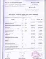 Báo cáo KQKD hợp nhất quý 1 năm 2012 - Công ty Cổ phần Đầu tư và Phát triển KSH