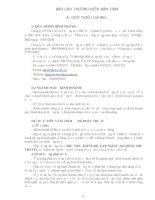 Báo cáo thường niên năm 2008 - CTCP Du lịch và Thương mại DIC