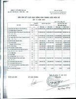 Báo cáo KQKD quý 4 năm 2010 - Công ty Cổ phần Hóa An
