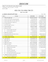 Báo cáo tài chính quý 2 năm 2008 - Công ty Cổ phần Xây dựng Công nghiệp DESCON