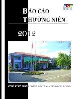 Báo cáo thường niên năm 2012 - Công ty Cổ phần Khoáng sản và Xây dựng Bình Dương