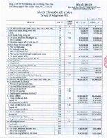 Báo cáo tài chính quý 2 năm 2013 - Công ty Cổ phần Đầu tư Thương mại Bất động sản An Dương Thảo Điền