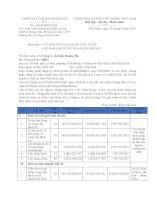 Báo cáo tài chính quý 2 năm 2014 (đã soát xét) - Công ty Cổ phần Hoàng Hà