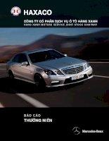 Báo cáo thường niên năm 2010 - Công ty Cổ phần Dịch vụ Ô tô Hàng Xanh