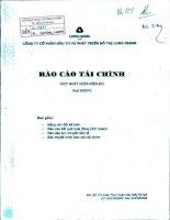 Báo cáo tài chính hợp nhất quý 3 năm 2010 - Công ty cổ phần Đầu tư và Phát triển Đô thị Long Giang