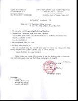 Báo cáo tài chính công ty mẹ năm 2012 (đã kiểm toán) - Công ty Cổ phần Đường Ninh Hòa