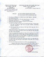 Báo cáo tài chính quý 1 năm 2016 - Công ty Cổ phần May Phú Thịnh - Nhà Bè