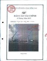 Báo cáo tài chính quý 2 năm 2013 - Công ty Cổ phần Cảng Đồng Nai