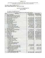 Báo cáo tài chính quý 1 năm 2009 - Công ty Cổ phần Licogi 13