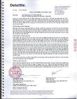 Báo cáo tài chính công ty mẹ năm 2013 (đã kiểm toán) - Công ty cổ phần Hóa phẩm dầu khí DMC - miền Bắc