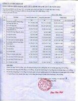 Báo cáo tài chính quý 3 năm 2013 - Công ty Cổ phần Bột giặt Lix