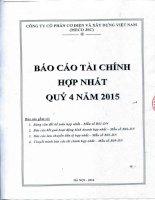 Báo cáo tài chính hợp nhất quý 4 năm 2015 - Công ty Cổ phần Cơ điện và Xây dựng Việt Nam