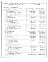 Báo cáo tài chính năm 2009 - Công ty Cổ phần Đầu tư và Xây dựng Thủy lợi Lâm Đồng