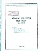 Báo cáo tài chính hợp nhất quý 2 năm 2012 - Công ty cổ phần Đầu tư và Phát triển Đô thị Long Giang