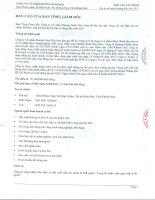 Báo cáo tài chính quý 2 năm 2011 (đã soát xét) - Công ty Cổ phần Đường Ninh Hòa