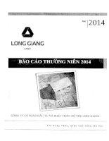 Báo cáo thường niên năm 2014 - Công ty cổ phần Đầu tư và Phát triển Đô thị Long Giang