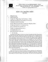 Báo cáo thường niên năm 2013 - Tổng Công ty Gas Petrolimex-CTCP