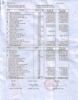 Báo cáo tài chính quý 2 năm 2009 - Công ty Cổ phần Ngân Sơn