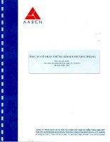 Báo cáo tài chính năm 2012 (đã kiểm toán) - Công ty Cổ phần Chứng khoán Phượng Hoàng