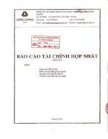 Báo cáo tài chính hợp nhất quý 4 năm 2011 - Công ty cổ phần Đầu tư và Phát triển Đô thị Long Giang