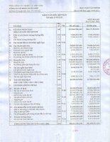 Báo cáo tài chính quý 1 năm 2011 - Công ty Cổ phần Ngân Sơn