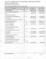 Báo cáo tài chính quý 1 năm 2009 - Công ty Cổ phần Đầu tư và Xây dựng Thủy lợi Lâm Đồng