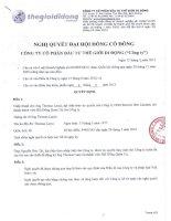 Nghị quyết Đại hội cổ đông bất thường ngày 05-03-2013 - Công ty cổ phần Đầu tư Thế giới Di động